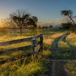 farm-australia-15