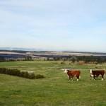 farm-australia-18
