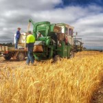farm-australia-7