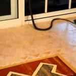 serpenti-australiani-velenosi