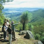 Lamington-National-Park