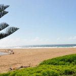 avoca-beach