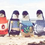 L'uomo-che-crea-maglioncini-per-pinguini