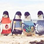 pinguini-maglioncini-5
