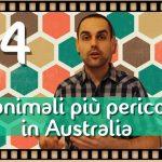 I-10-animali-più-pericolosi-in-Australia