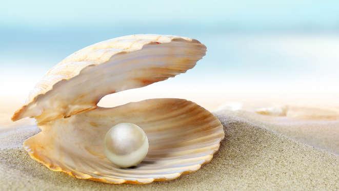 raccolta-delle-perle-in-australia