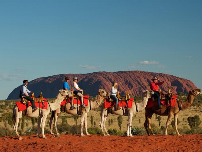 uluru-camel-tours
